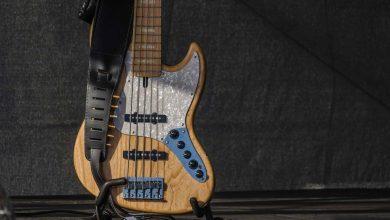 Photo of Das wichtigste Zubehör für den Bass